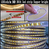 Светодиодные ленты 3014. led - ленты, диодные ленты. 9 цветов., фото 2