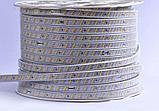 Ленты светодиодные 220 в. В ПВХ оболочке  LED лента SMD 2835, фото 7