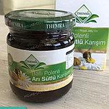 Balli Polenli ari Sutlu Karisim от Themra - Детская эпимедиумная паста Themra, фото 2