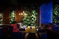 Зеленая стена из искусственных растений
