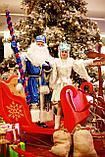 Дед мороз и Снегурочка на дом и на санях г. Алматы., фото 4