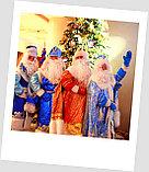 Дед мороз и Снегурочка на дом и на санях г. Алматы., фото 5