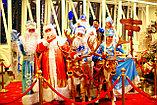 Дед мороз и Снегурочка на дом и на санях г. Алматы., фото 7