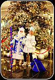 Дед мороз и Снегурочка на дом и на санях г. Алматы., фото 8