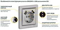 IEK Розетка РЮш10-1-Б с заземляющим контактом с защитной шторкой 16А USBх2 2,1A BOLERO, ERB14-K01-16-U2