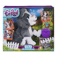 Щенок Хаски интерактивный Hasbro Furreal Friends E0384