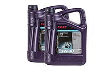 Масло моторное ROWE HIGHTEC SYNT RS DLS SAE 5W-30, 10 литров (2 x 5L)