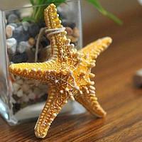 Морская звезда, декоративная, оранжевая