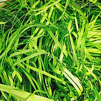Наполнитель бумажный зеленый, 50 гр