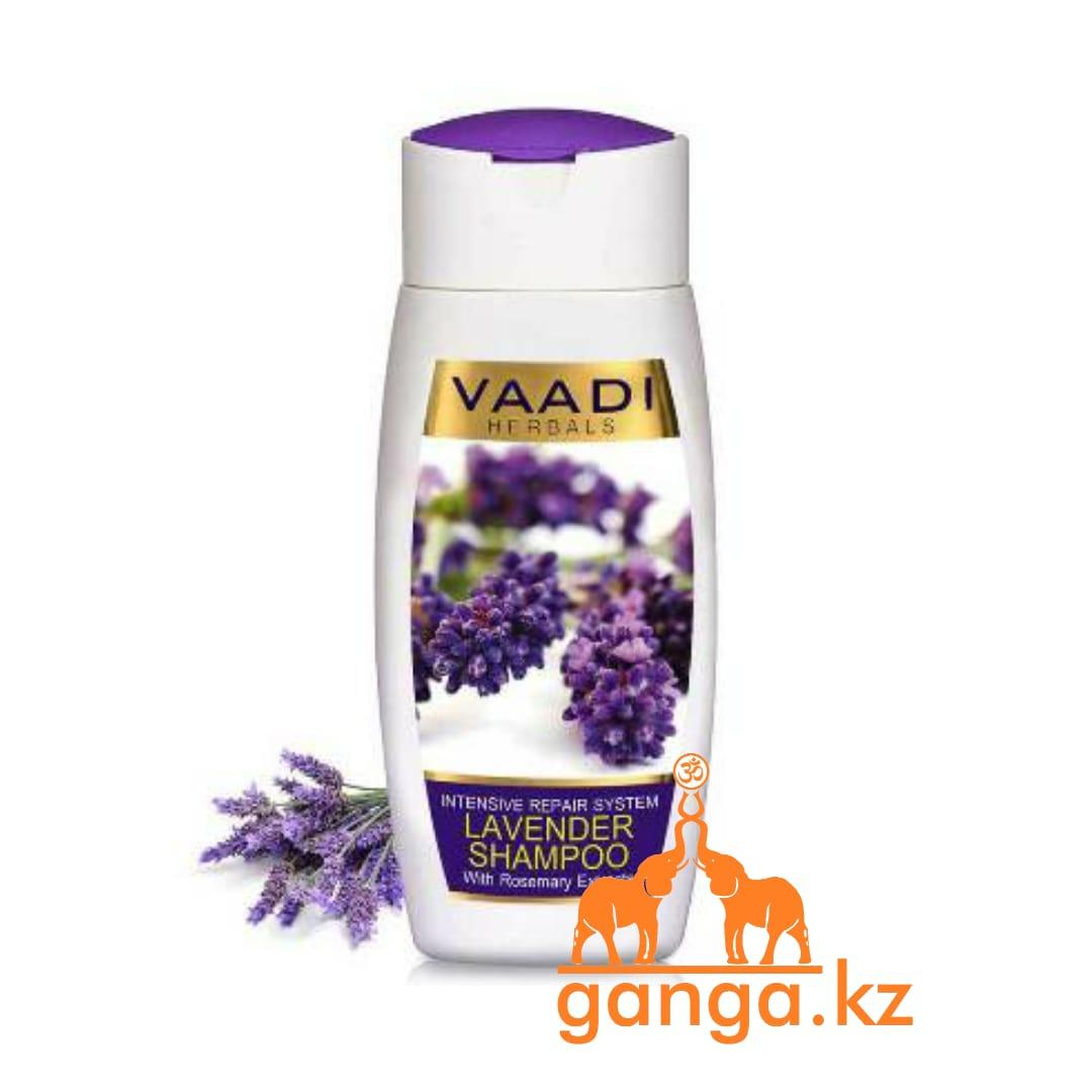 Шампунь с лавандой и экстрактом розмарина (Lavender shampoo with rosemary shampoo VAADI Herbals), 110 мл