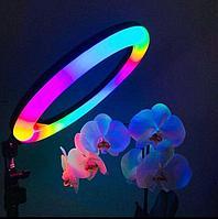 +ПОДАРКИ! Кольцевые Лампы 26 см Цветная разноцветная RGB LED, фото 1