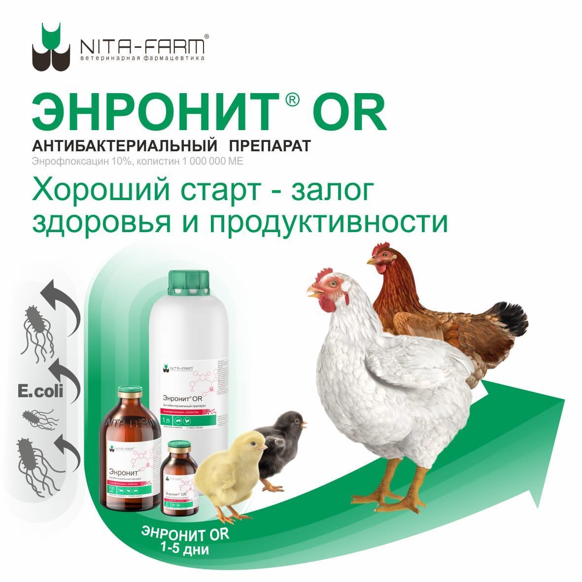 Энронит ОР, 1 л