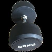 Гантель обрезиненная Johns 74012 от 2 кг до 50 кг (поштучно) (10 кг)