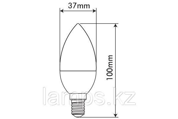 Светодиодная лампа BASIS/3.3W/SMD/E14/6400K/C37/CBOX/LED LAMP, фото 2