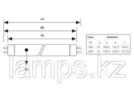 Лампа флюоресцентная T8 FT/18W/G13/RED/T8