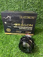 BI-LED Platinum dragon plus