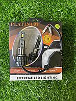 Светодиодные лампы головного света Platinum Н1
