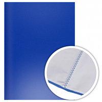 Папка А4 40 файлов Эконом синяя Dolce Costo