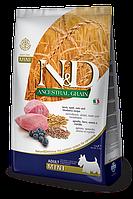 Lamb&Blueberry Mini Adult, ягненок, черника, спельта, овес, N&D, уп. 2,5кг.