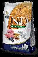 Lamb&Blueberry Medium/Maxi Adult, ягненок, черника, спельта, овес, N&D, уп. 12кг.