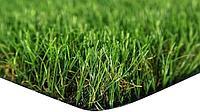 REVOLUTION GRASS
