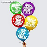 """Воздушные шары """"Super"""", Щенячий патруль (набор 5 шт) 12 дюйм"""