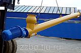 Шнек для цемента ⌀219\4000 «SCUTTI» (Италия), фото 3