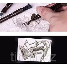 Игровой набор - Юный палеонтолог, фото 3