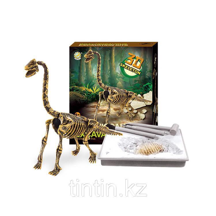 Игровой набор - Юный палеонтолог