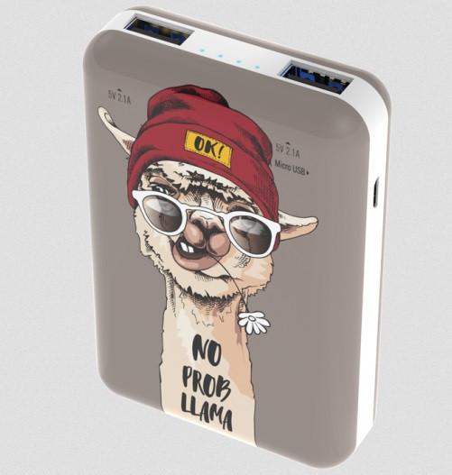 Зарядное устройство Power bank Ritmix RPB-10007 Lama
