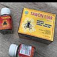 """""""Таwon Liаr"""" , ОРИГИНАЛ, тавон, пчёлка, капсулы для суставов, Индонезия., фото 2"""
