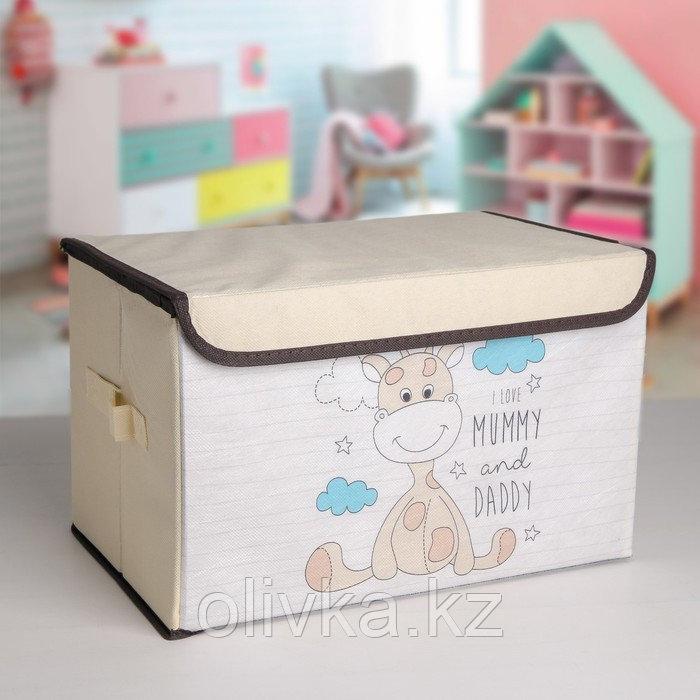 Короб для хранения с крышкой «Жеребёнок», 39×25×25 см