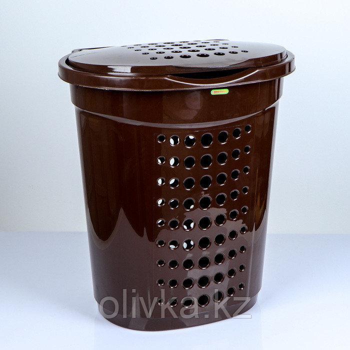 Корзина для белья с крышкой Алеана, 60 л, 50×37×57 см, цвет тёмно-коричневый