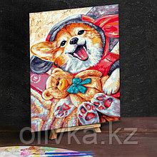 Картина по номерам на холсте 40×50 см «Корги с игрушкой»