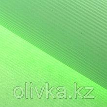 """Бумага гофрированная """"Однотонная"""", светло-зеленая, 50 х 70 см"""