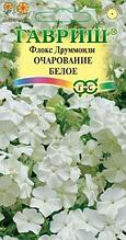 """Семена флокса друммонда Гавриш """"Очарование белое""""."""