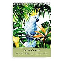 Скетчбук Попугай из черной дизайнерской бумаги А4, 30 листов