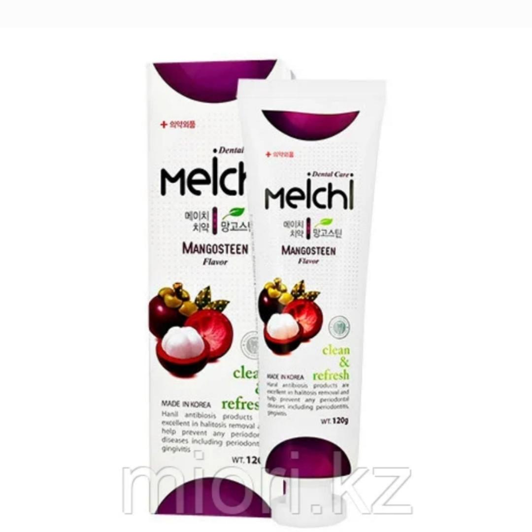 Зубная паста Meichi tropic Dental Care Clean & Fresh Mangosteen