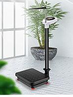 Весы с ростомером YHWH-001