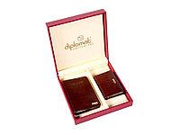 Набор Diplomat: обложка для паспорта, визитница, коричневый (артикул 58716)