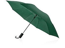Зонт складной Андрия, зеленый (артикул 906153)