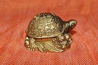 Сувенирная черепаха