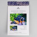 "Алмазная мозаика ""Корзинка винограда"" 29,5×20,5 см, 25 цветов, фото 3"