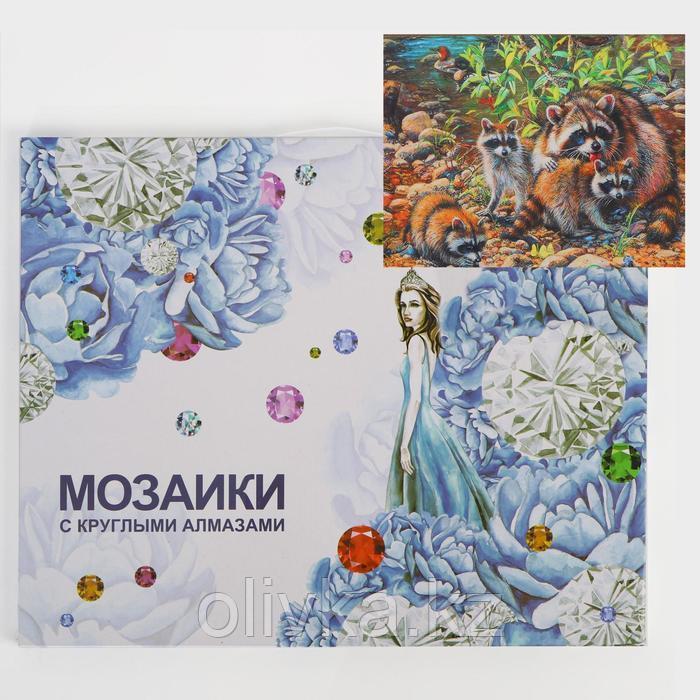 Алмазная мозаика с подрамником, полное заполнение «Еноты» 40×50 см