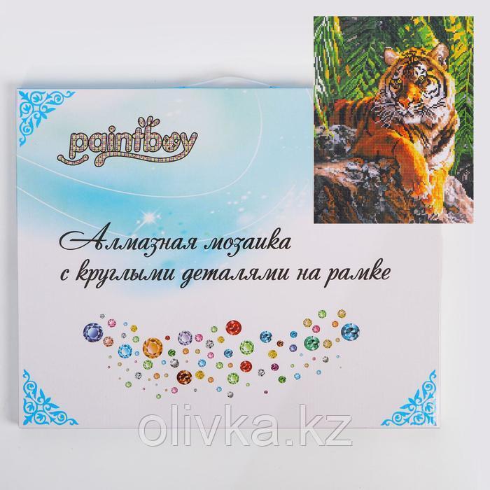Алмазная мозаика с подрамником, полное заполнение «Тигр» 40×50 см