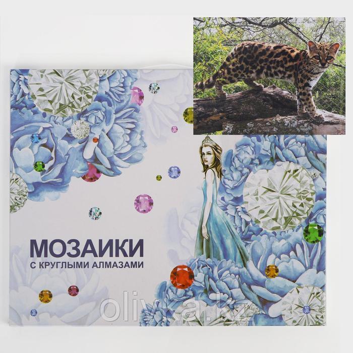Алмазная мозаика с подрамником, полное заполнение «Молодой гепард» 40×50 см