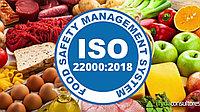 Сертификация системы менеджмента безопасности пищевых продуктов по ISO 22000