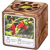 Набор для выращивания с органайзером «Экокуб Burn», годжи (артикул 10608.03)