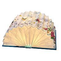 Интерьерная лампа Open book (артикул 8701.57)
