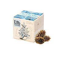 Набор для выращивания «Экокуб», ель голубая (артикул 3431)